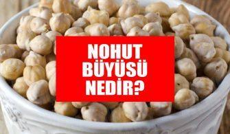 nohut-buyusu